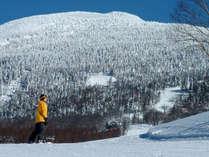【雪マジ!平日リフト券無料】4名以上でハッピープライス☆朝食バイキング付きプラン