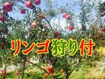 信州秋の味覚♪りんご狩り体験付宿泊プラン♪