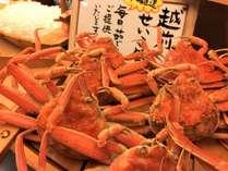 蟹フェス2019!第1弾【釜茹で越前背子蟹】
