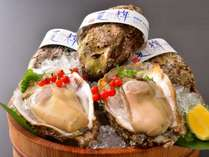 鳥取ブランド【夏輝】天然の岩牡蠣は6月中旬~8月中旬までです。