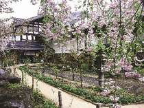 しだれ桜の見頃は5月上旬・・・秘湯の一軒宿「槍見舘」外観