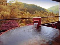 半露天風呂付客室(316)から見た秋の風景(イメージ)
