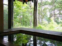 *お風呂/大きな窓越に広がる高原の四季の移ろい。スーと入る外気におもわず露天かと錯覚してしまいます。