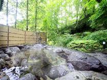 敷地内から湧き出る温泉は、無色透明の単純アルカリ泉。サウナ、ジャグジー、打たせ湯、寝湯も楽しめます。