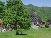爽やかな夏の奥志賀高原