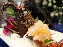 【食事】甘味が凝縮された伊勢エビのお造りは別注も可