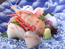 富山湾の鮮魚のお造り(旬彩膳)