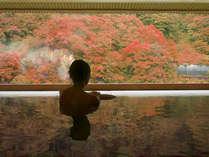 露天風呂からはお湯につかりながら素晴らしい紅葉を眺められます