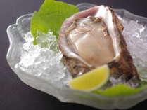 ミネラルたっぷりの岩牡蠣。富山湾夏の風物詩です。