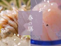 【お料理】春限定!富山湾の春を告げるホタルイカと白えび「春の膳」