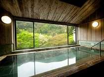 奥湯河原の自然を見渡せる展望大浴場。湯の底から絶え間なく温泉が出ております。