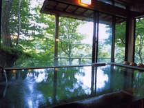 ガラス越しに庭園を眺めながら源泉掛け流しの温泉をお楽しみいただけます