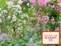 絵画のようなバラは5月20日~6月上旬がベストシーズン[アカオハーブ&ローズガーデン]割引有・送迎付