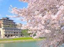 前を流れる犀川沿いは、桜が咲き乱れます☆