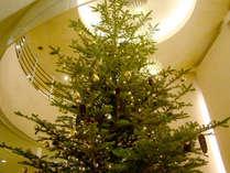 *【Xmasツリー】12月はロビーにクリスマスツリーが登場☆ロマンチックなひと時をお過ごし下さい♪