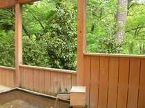 露天風呂から眺める新緑