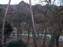 客室からの景色です。冬場木の葉が落ちると川が良く眺められます