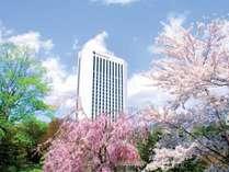 ホテル外観*春