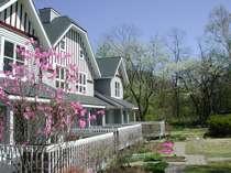 春のアメリーハウス軽井沢