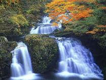 *赤目四十八滝。当館より車で5分。マイナスイオンをたっぷり浴びながらハイキング♪
