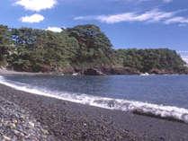 【50歳以上限定】お食事は腹八分目海鮮会席をご用意♪~海を眺めながら穏やかなひと時を~