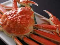 茹でずわい蟹1杯にカニ味噌♪カニ刺し♪かにしゃぶ・天婦羅・かに雑炊!蟹の旨みをフルコースで堪能♪