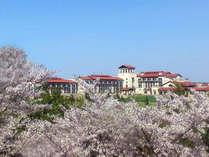 桜を眺めながらゴルフプレーをお楽しみいただけます。