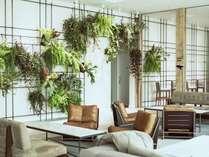it.living壁掛けの植物です!