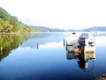 穏やかな笹の湖面