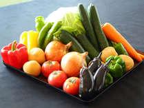 皆さまに安心して食べていただけるよう、できるだけ自家製の野菜とお米を使用しています。