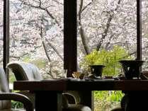 """【お部屋からお花見♪】全室嬉野川沿いの桜を堪能できる""""華の雫""""ならではのお花見プラン"""