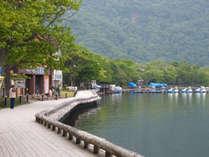 十和田湖畔・遊歩道