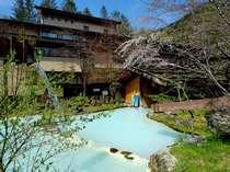 ≪大野天風呂≫春・芽吹く新緑と咲き出した山桜…自然の営みを感じる季節