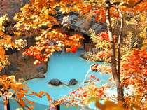 ≪大野天風呂≫紅葉と湯が色を競い合う!対比が美しい