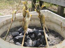 ★35周年記念★【旬の鮎を味わう】ほくほくの身が美味しい!鮎の釜飯・鮎の塩焼きを堪能