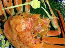 【特大越前がにコース】ボリューム満点★特大茹でカニ1杯&焼き蟹…。まさにかに尽くし!<48,000円~>