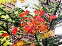 季の庭外観