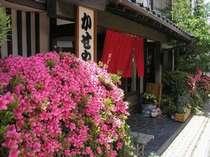 雲仙・小浜の格安ホテル 古湯の宿 かせや旅館