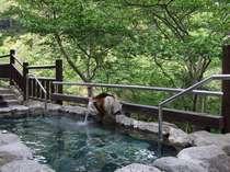 桜の樹まで手の届く露天風呂。新緑シーズン