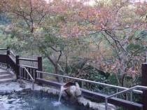 秋の露天風呂2