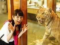 フロントロビーの剥製の虎