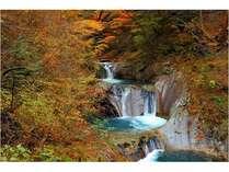 【紅葉狩り―名所の西沢渓谷やぶどう畑】山里に沸く創業安政三年160年の名湯の宿