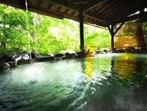 【かわせみの湯/大露天風呂】ボナリの森、最大の魅力は豊富な湯量を活かした大露天風呂。