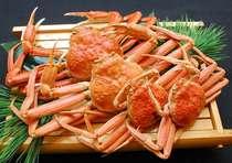 日本海冬の王様タグ付き越前蟹をあつあつ茹でたてで頂く人気コース! 越前蟹会席