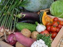 鳥取の野菜は美味しい!地元産野菜をたくさん使っています