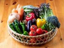 お料理は自家製野菜を使用しています