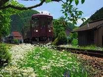 【ローカル鉄道旅♪ぶらり途中下車の旅♪】さらにお得に!清流・長良川鉄道2日間乗り放題乗車券付プラン