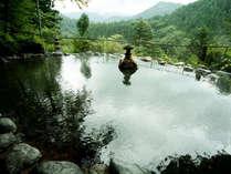 高くそびえる杉の木立に囲まれた野天風呂