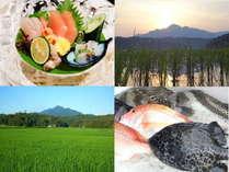 【田舎体験】新潟の海の幸+地酒+田植えのプレミアムツアー!農家と蔵元と料理人がフルアテンド!