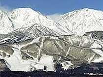 栂池スキー場は初心者~上級者まで満足のコースレイアウト。ホテルから無料送迎ですぐ! の画像
